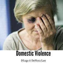 Domestic Violence in Florida