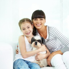 Who Gets the Family Pet in a Florida Divorce?
